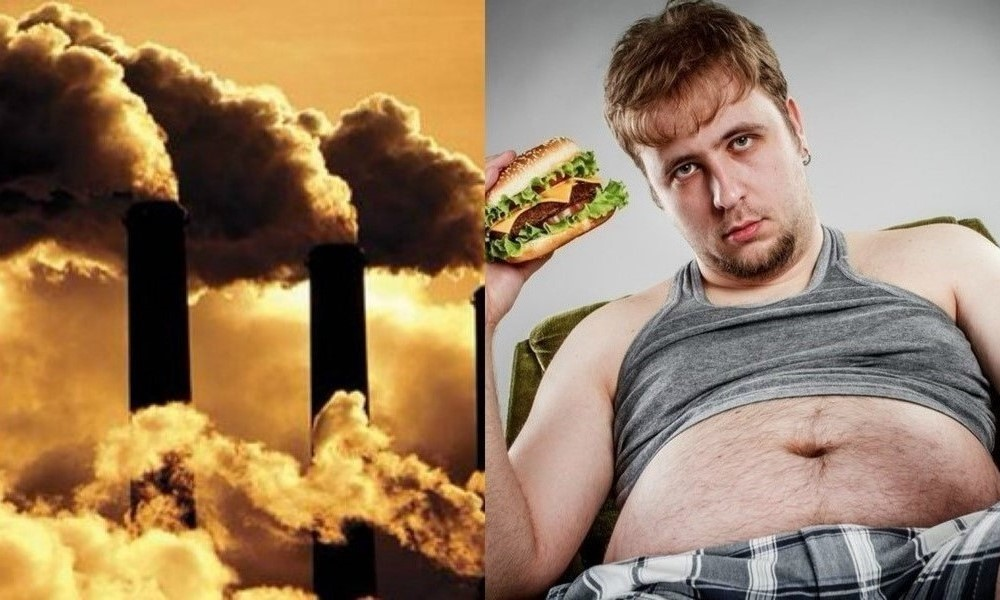 Climate change, obesity
