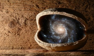 Nut with universe