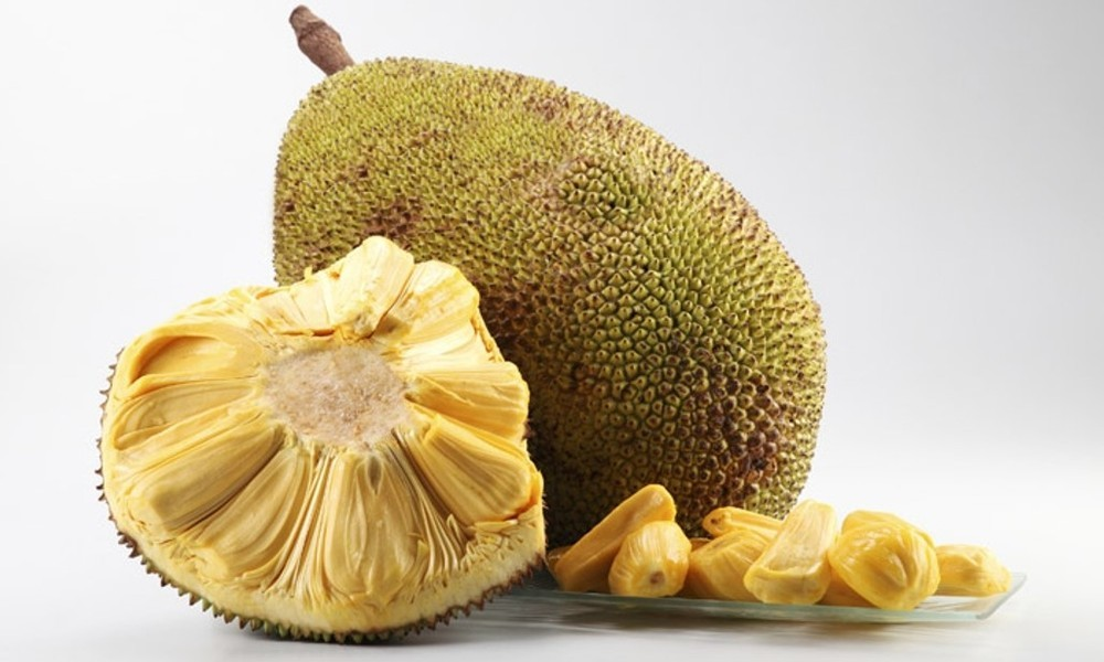 Natural Meat Alternative Jackfruit